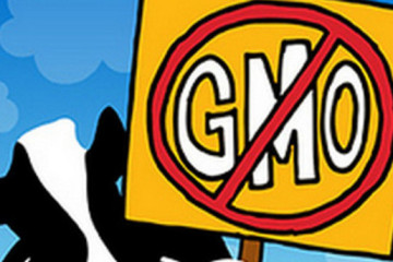 GMA-loses-bid-to-stop-the-clock-on-Vermont-GMO-labeling-law_strict_xxl