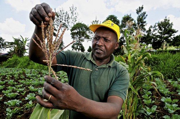Kenya_farmer_Neil