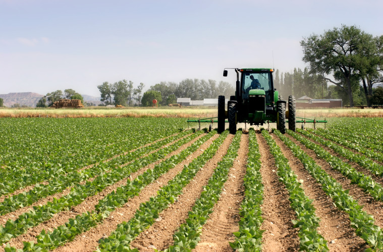 bigstockphoto_Tractor_Plowing_The_Fields_128989