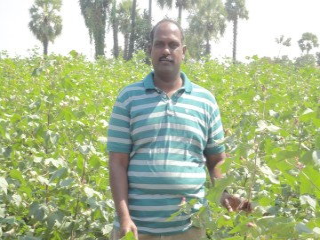 India_Rajesh-Kumar_farm_India_2010