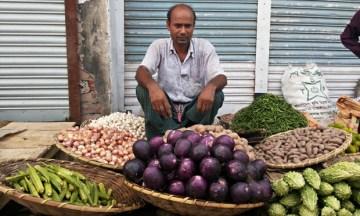 Bt brinjals on the market without label in Jamalpur , Bangladesh